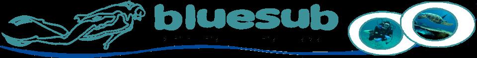 bluesub logo
