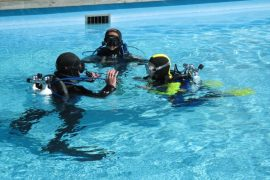 Top Dive Kindertauchen