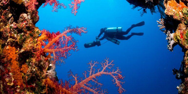 Top Dive Magazin OWD dive4life