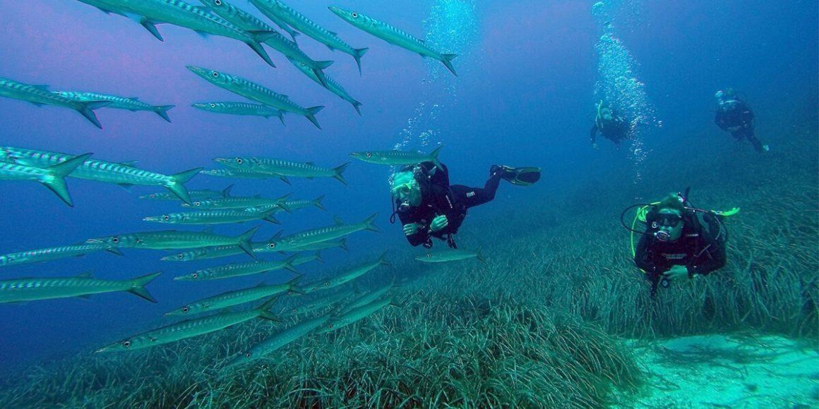 Taucher unter Wasser auf Ibiza