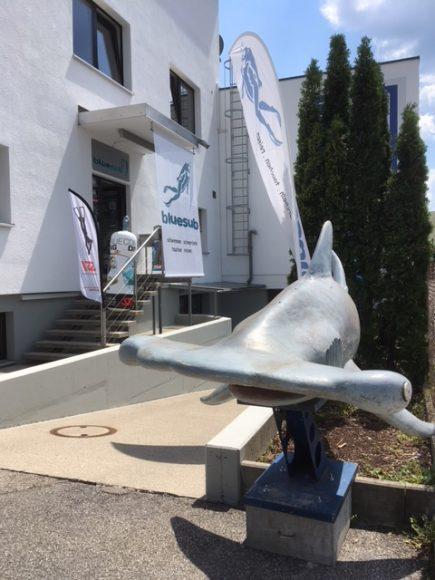 Eingang mit Hai