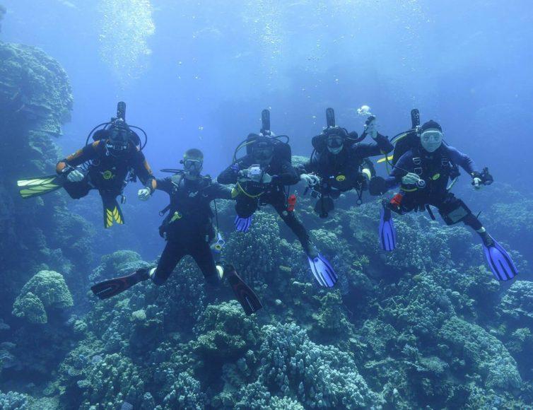 Fünf Taucher unter Wasser