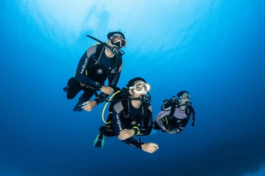 Top Dive Aqualung Dynaflex 1